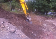 Excavation of infested soil and removal